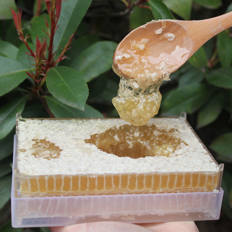 长白山天然蜂巢蜜 农家自产蜂蜜 野生百花蜜 老蜂巢蜜盒装500g/盒