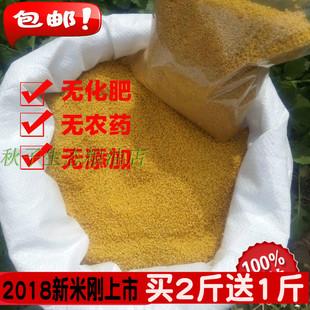 2018广灵小米山西特产月子米东方亮小米1斤包邮