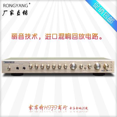 荣扬 DSP-868 家用专业卡拉OK 麦克风混响器 HIFI前级 调谐器 KTV