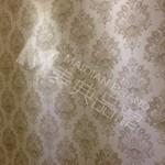 硅藻泥液体壁纸\电视背景墙\丝网模具\ 硅藻泥印花模具OS425