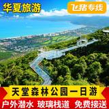 飞猪专线 三亚一日游 亚龙湾天堂森林公园 玻璃栈道纯玩户外潜水
