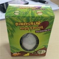 恐龙蛋化石恐龙化石
