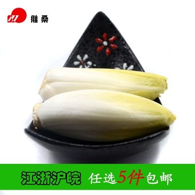 玉兰菜 500g 菊苣 苦白菜 江浙沪皖任选5件包邮 应季新鲜蔬菜