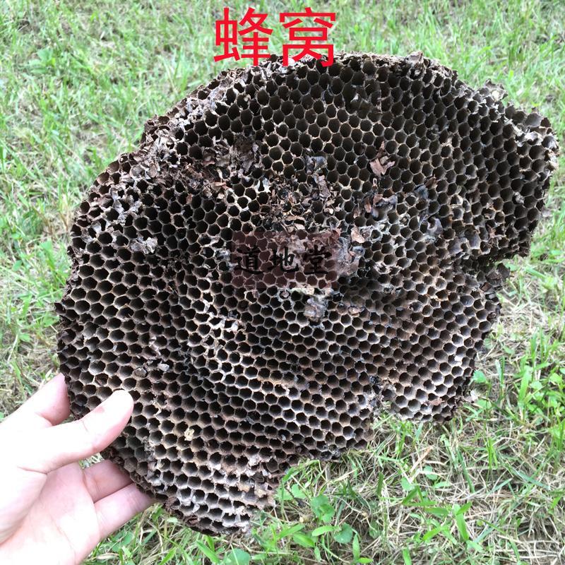 道地堂100克中药材 野生蜂窝 蜂房