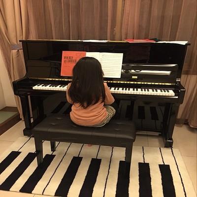 时尚黑白钢琴键盘加厚地毯客厅茶几沙发地毯卧室床边手工腈纶地毯是什么档次