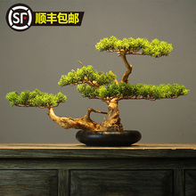 New Chinese Style Simulated Pine Bonsai Decoration Natural Solid Wood Root Art Living Room, Studio, Tea Table, Home Soft Decoration
