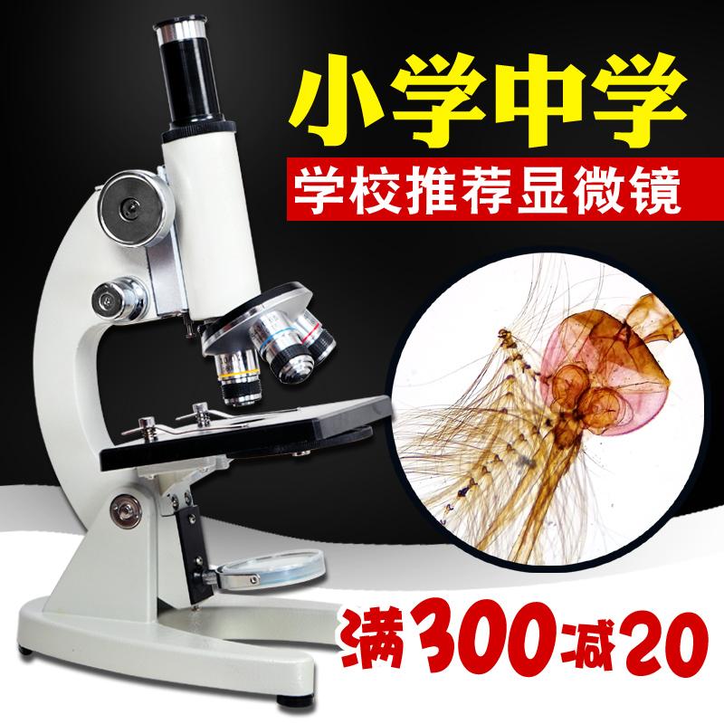 倍光学显微镜