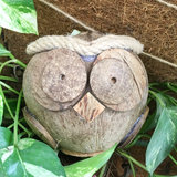 Creative handmade cute coconut shell crafts owl ornaments Nordic home animal decoration gift