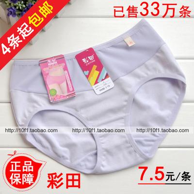 4条起包邮【正品】彩田1103 女士 纯棉舒适透气提臀 中腰平角内裤