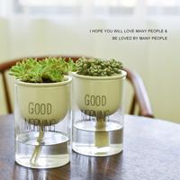 盆栽花盆透明玻璃