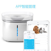 Luxury cat - Petoneer cat water dispenser APP intelligent remote control water quality monitoring automatic filtration cycle
