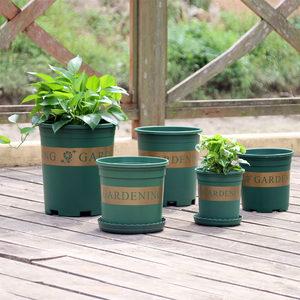 老花农 园艺加仑盆 1/2/3加仑圆形塑料花盆家用绿萝月季种植花盆