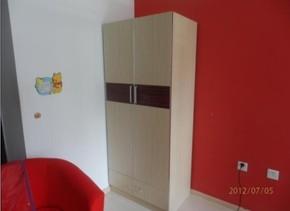 板式家具 两门衣柜 柜类 厂家直销 爱家私 简易衣柜 经济型