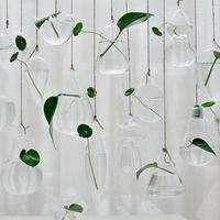 Creative hanging transparent glass vases Small hanging bottles Simple watering flowers Indoor gardening home decorative bottles