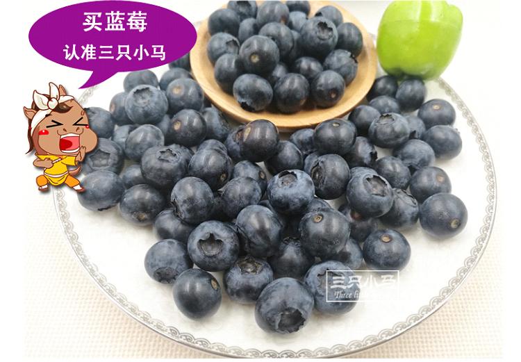 丹东蓝莓鲜果纯天然当天现摘现发新鲜孕妇水果4盒6盒125克/盒包邮