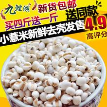 新鲜贵州小薏米 包邮 买4送1 薏米仁薏仁米苡仁五谷杂粮粗粮油500g