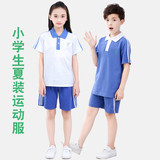 Shenzhen Unified School Uniform Primary School Students Summer, Autumn and Winter Sports Short Sleeve Top, Short Pants and Long Pants Suit for Men and Women in Summer