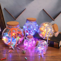 LED light wishing bottle luminous lucky star glass cork bottle creative bottle decoration bottle hub star bottle