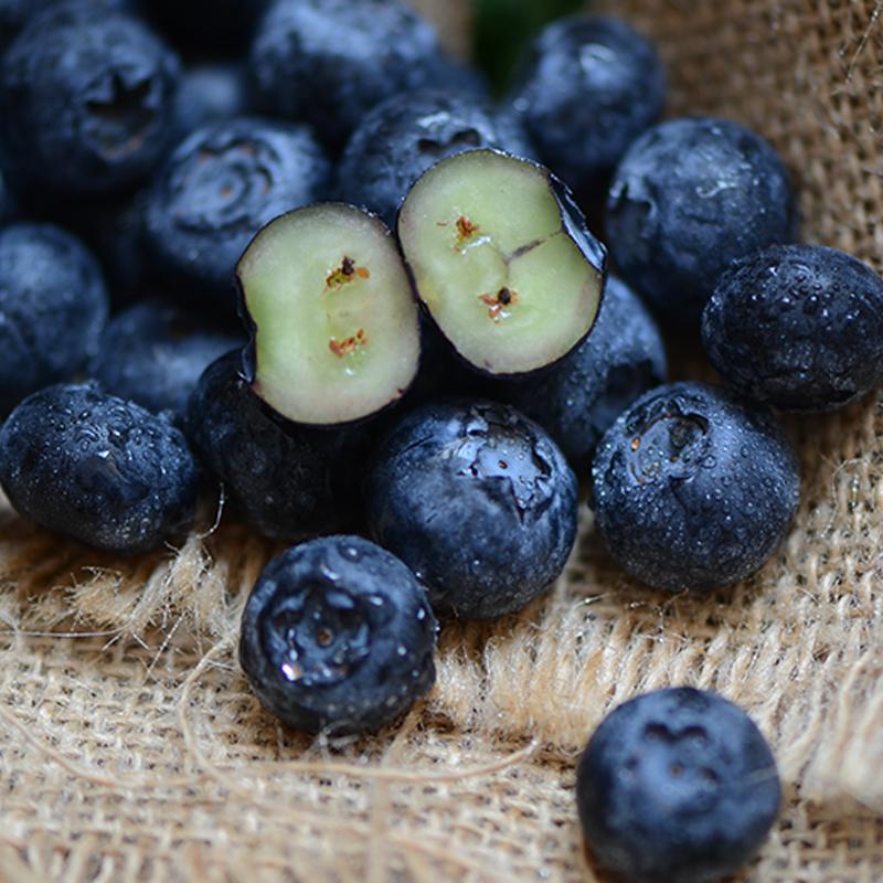 新鲜蓝莓鲜果当天现摘现发500g盒装顺丰包邮纯天然大果山东特产
