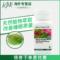 美国产安利纽崔莱蛇麻草缬草精华睡眠片睡眠康改善睡眠质量90片