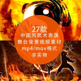 中国风武术表演 南拳北腿 太极拳 水墨少林功夫LED背景视频素材