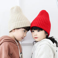 Ins Korean children's knitted hat plus velvet solid color baby child boy girl big boy wool hat autumn and winter tide