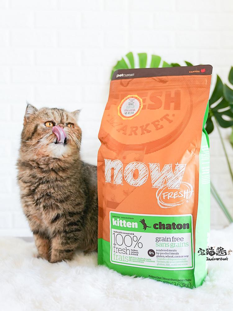 Корм для кошек Артикул 534734434357