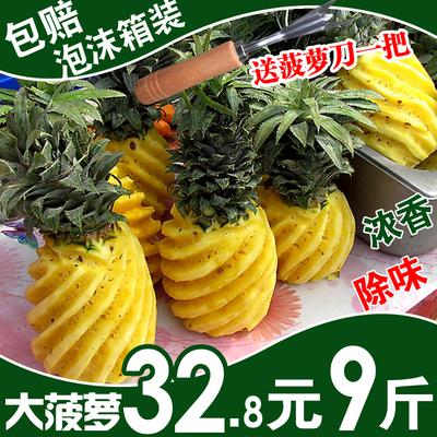 【泡沫箱装】大菠萝新鲜水果凤梨大果胜云南菠萝手撕凤梨越南菠萝