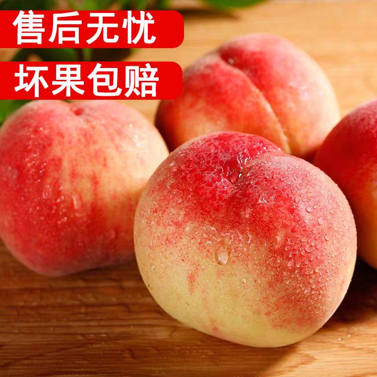 甘肃水蜜桃新鲜现摘现发应季水果甜多汁毛桃5斤大脆孕妇非油阳山