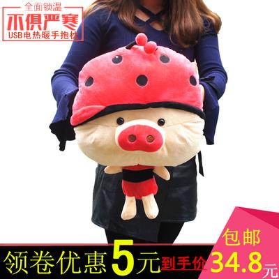 冬季新款暖手宝抱枕插手可爱无水防爆USB加热韩版卡通毛绒手捂