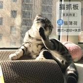 猫抓板大号瓦楞纸猫窝猫抓板磨爪器猫爪板猫砂垫子猫玩具猫咪用品