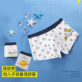 Children's Underwear Boys Flat Corner Pure Cotton 6 Middle-aged Boys Short Pants Head 10 Boys 12 Children Primary School Pupils Four Corners 15 Years Old 8