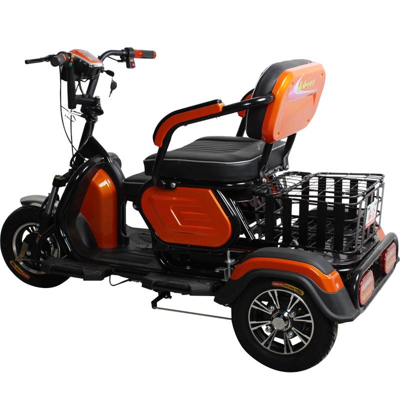 电动三轮车接送孩子成人家用新款老年人老人女性三轮电瓶车爬坡王