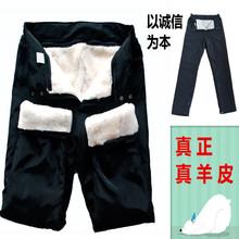 男女羊皮裤皮毛一体裤子真皮羊剪绒羊毛内胆裤户外保暖防风棉裤