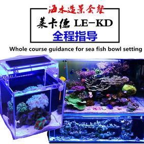 海水鱼缸水族箱造景装饰套餐高钙活石珊瑚海缸水族造景石水草包邮