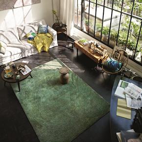 ESPRIT正品地毯客厅卧室地垫进口新西兰羊毛绿色茶几垫茶几地毯春