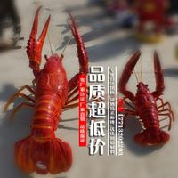 Big lobster sculpture glass sculpture painted cartoon guards sculpture crabs sculpture crab sculpture ornaments