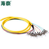 Hna 12 core bundle tail FC round head single mode fiber jumper cable telecom grade 1.5 meters can be customized