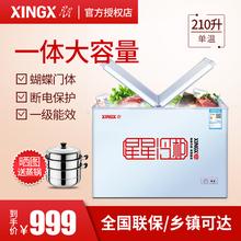 XINGX/星星 BD/BC-210HEC 家用冰柜冷冻冷藏 小型卧式 商用冷柜