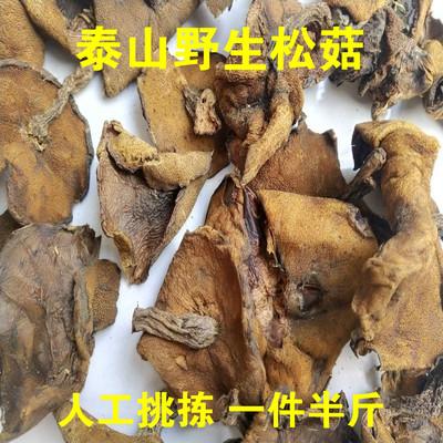 泰山松蛾徂徕山野生蛾子山东特产干货蘑菇松菇小香菇松蘑半斤包邮