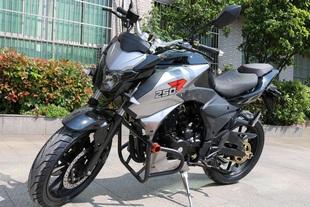 地平线三代摩托车大排量街跑大黄蜂双缸摩托车原装正品可以上牌