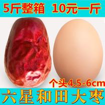 小礼品送件包邮3120g罐装红枣天山雪枣新疆特产大枣