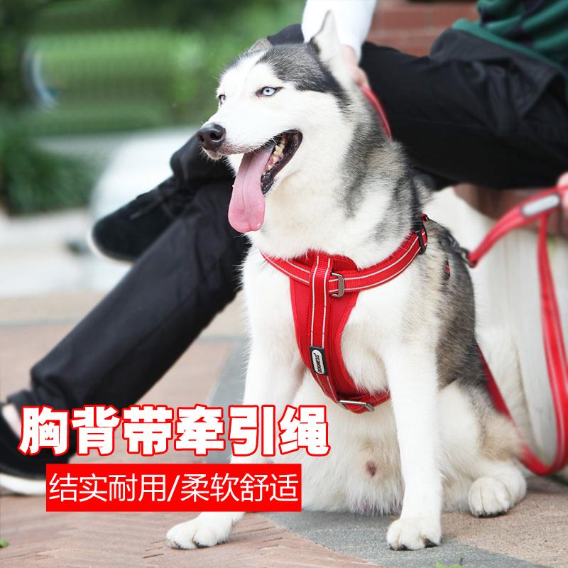 警犬牵引带