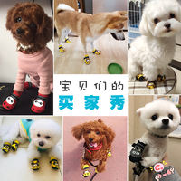 Soft bottom Teddy shoes set of 4 puppies pet shoes feet can not afford Pomeranian bear breathable small dog shoes