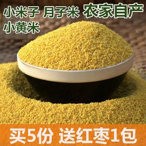 农家新米特产小黄米 黄小米 月子米粥 小米子 食用五谷杂粮满包邮