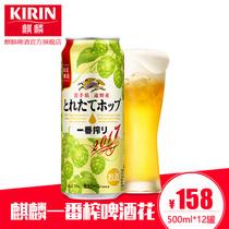 听12330ml进口酒花啤酒苦爽回甘皮尔森全麦精酿罐装青岛啤酒