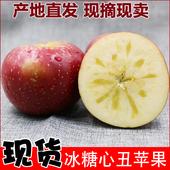 丑苹果四川阿克苏昭通陕西红富士 包邮 冰糖心苹果水果10斤新鲜批发