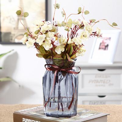 苏渠欧式玻璃花瓶透明水培植物绿萝富贵竹百合插花瓶创意摆件客厅
