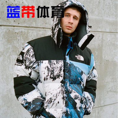 Supreme The North Face 17FW TNF 联名 北面 雪山冲锋衣  羽绒服