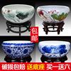 景德镇陶瓷鱼缸 龟缸